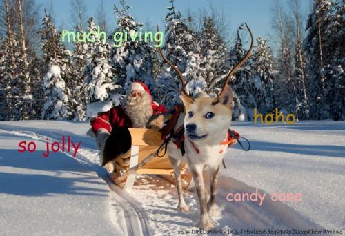 Happy Dogemas