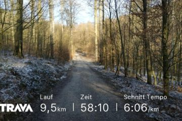 Jog around the blog [181]: Kalt im Wald