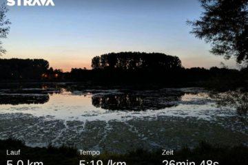 Jog around the blog [250]: Guten Morgen, Sonnenschein