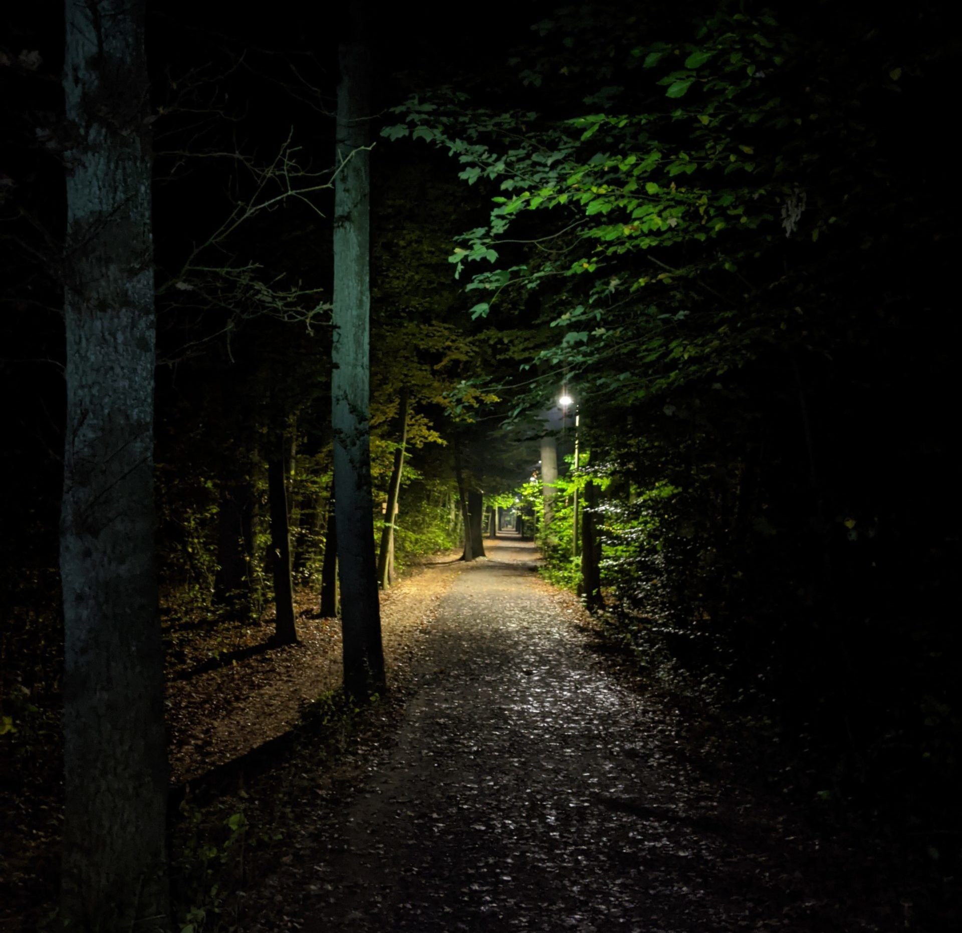 Jog around the blog [395]: Keine halbe Sachen mehr!